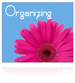 Basic (office) Organizing Service